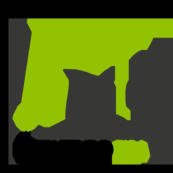 LOGO-RGB-TRASP come ottenere il SUPERBONUS 110% Casa a Pisa.